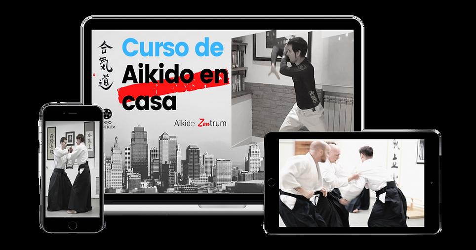 Dojo Zentrum TV - Plataforma Online Instrucción Aikido