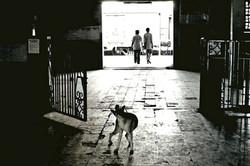 Inde sept 2001