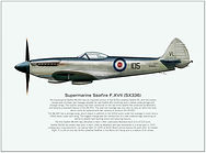 Seafire Mk 17new.jpg