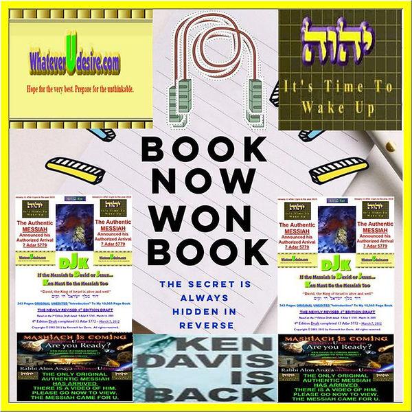 book now won book - secret is reverse FI