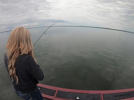 Why Do We Fish?