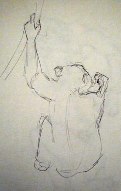 Edinburgh Zoo - Chimpanzee