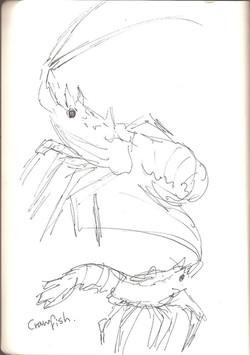 St. Andrews Aquarium - Cramfish