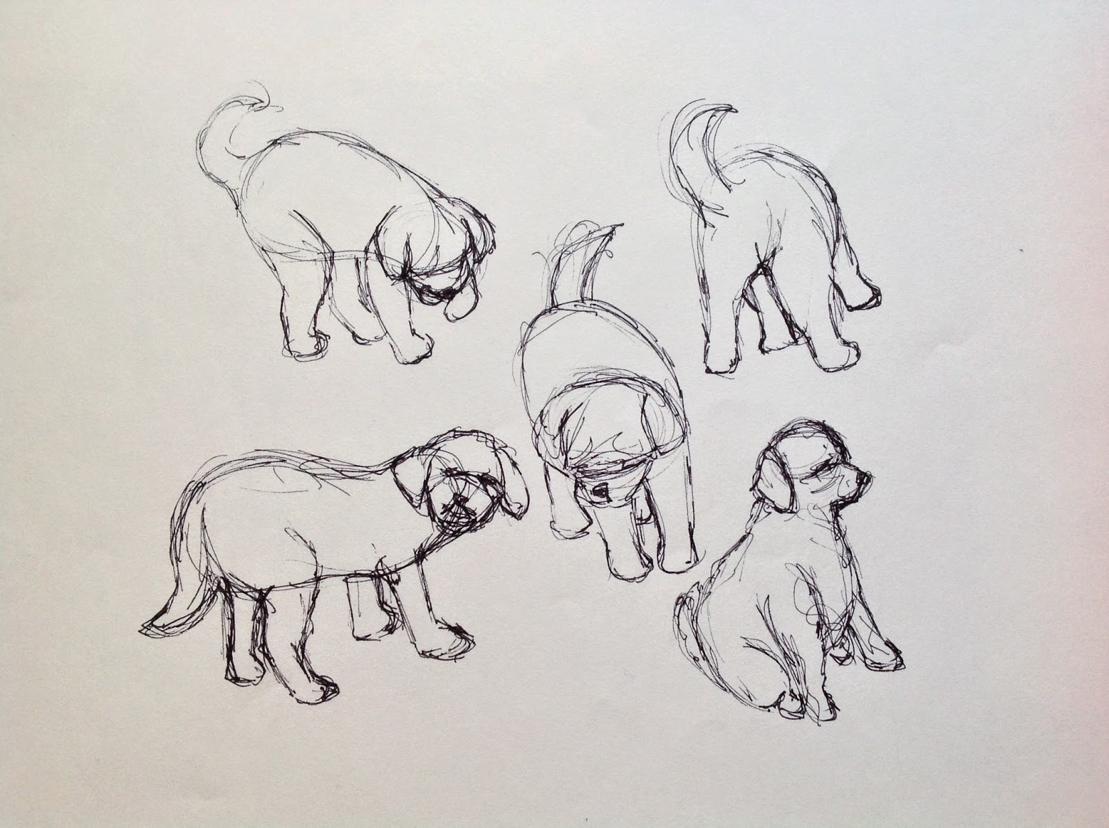 Sketches Of Pippa In The Garden