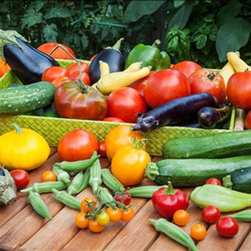 Virtual Nutrition Education: Just More Plants