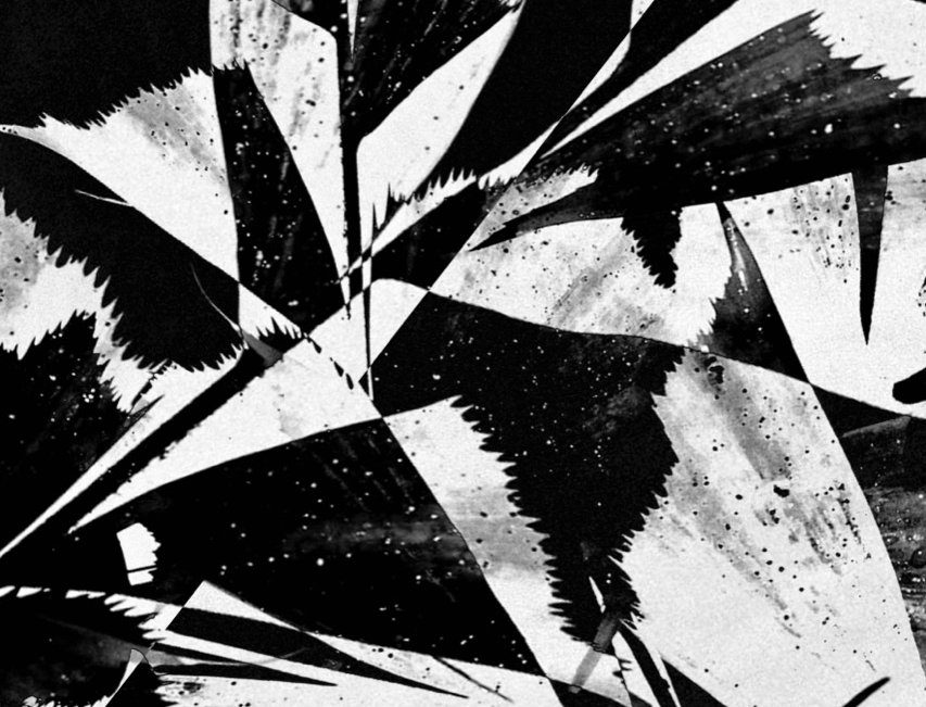 Untitled #28 | Miguel Domingos