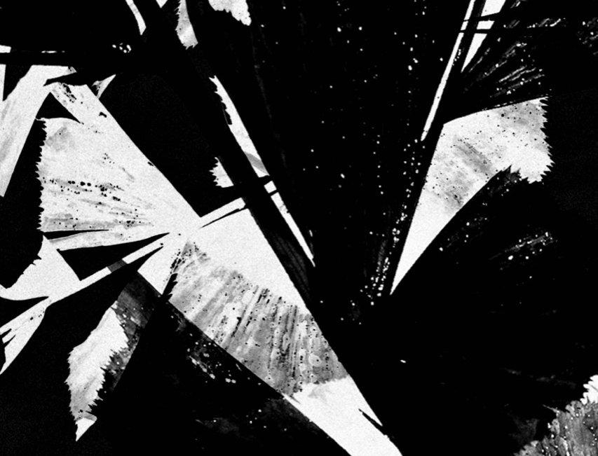 Untitled #17 | Miguel Domingos