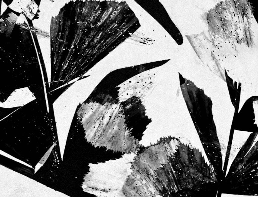 Untitled #25 | Miguel Domingos