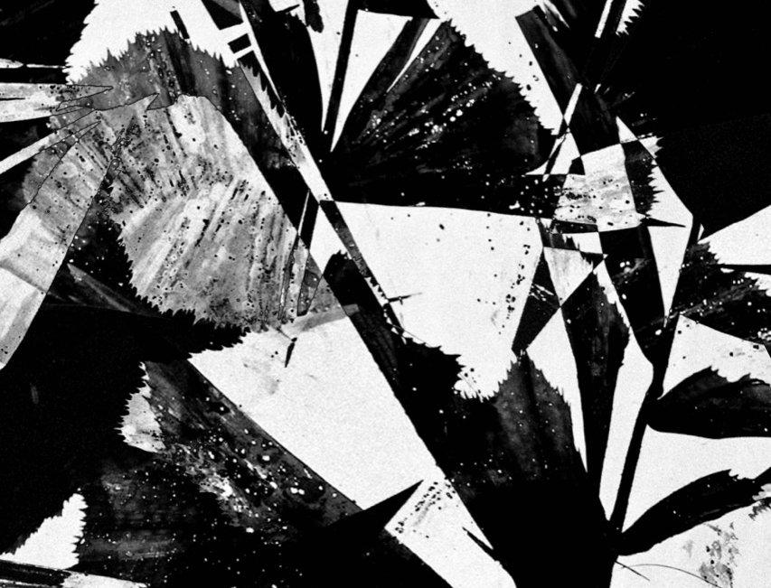 Untitled #24 | Miguel Domingos