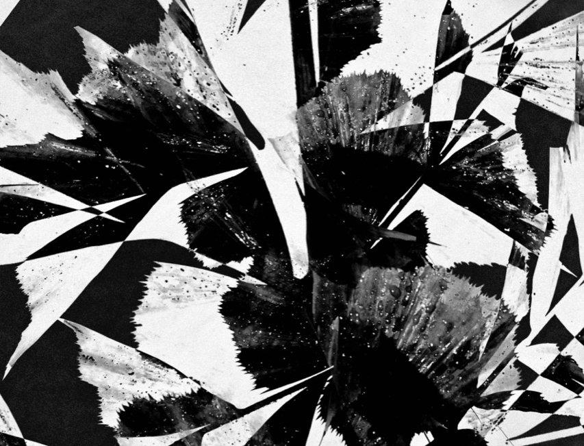 Untitled #20 | Miguel Domingos