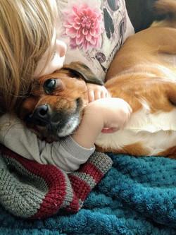 Happy cooper puppy cuddling