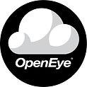 Open-Eye_Logo_4x-100.jpg