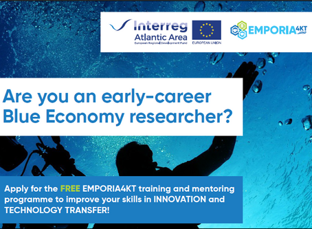 Mentoring and training opportunity for early-career Blue Economy researchers