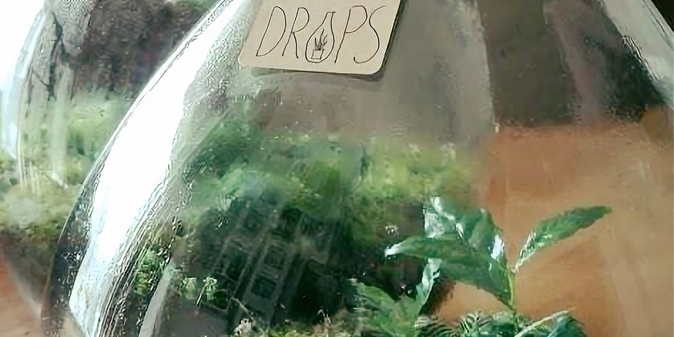 Workshop: Groen-Lab, maak zelf een ecosysteem in een fles.