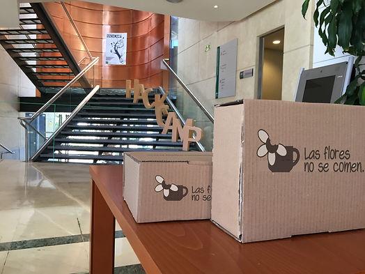 cajas comida personalizdas eventos