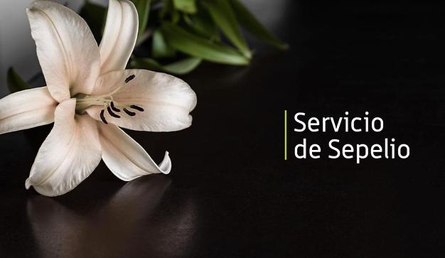servicio_de_sepelio.png