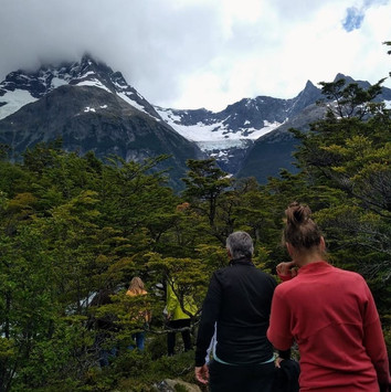 41- Cerro Negro, forest.jpg