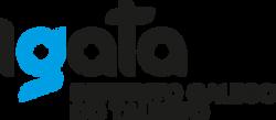 Igata logo