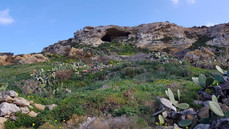 One day in Gozo