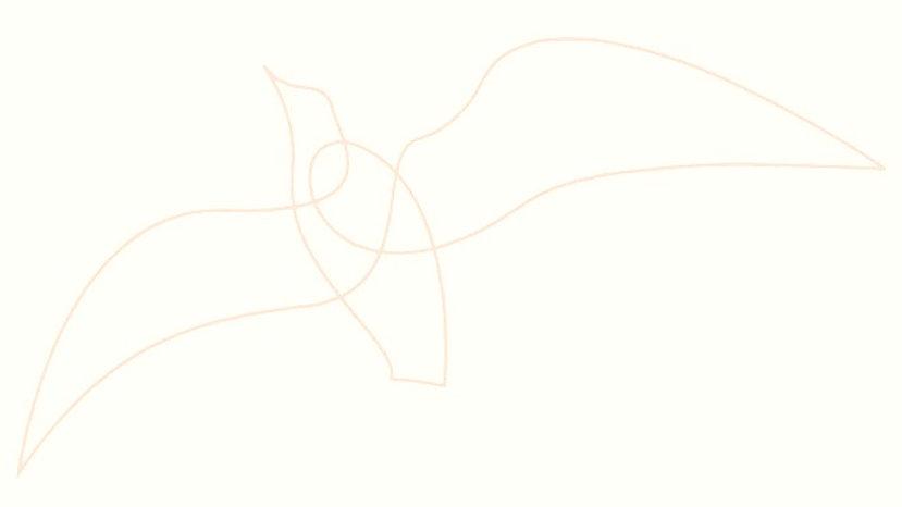 line-bird-05_edited_edited_edited.jpg