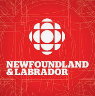 CBC NL - New 'game-changer' implant to treat opiate addiction comes to N.L.