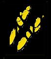 Human+Nature+Logo+Rectangle.png