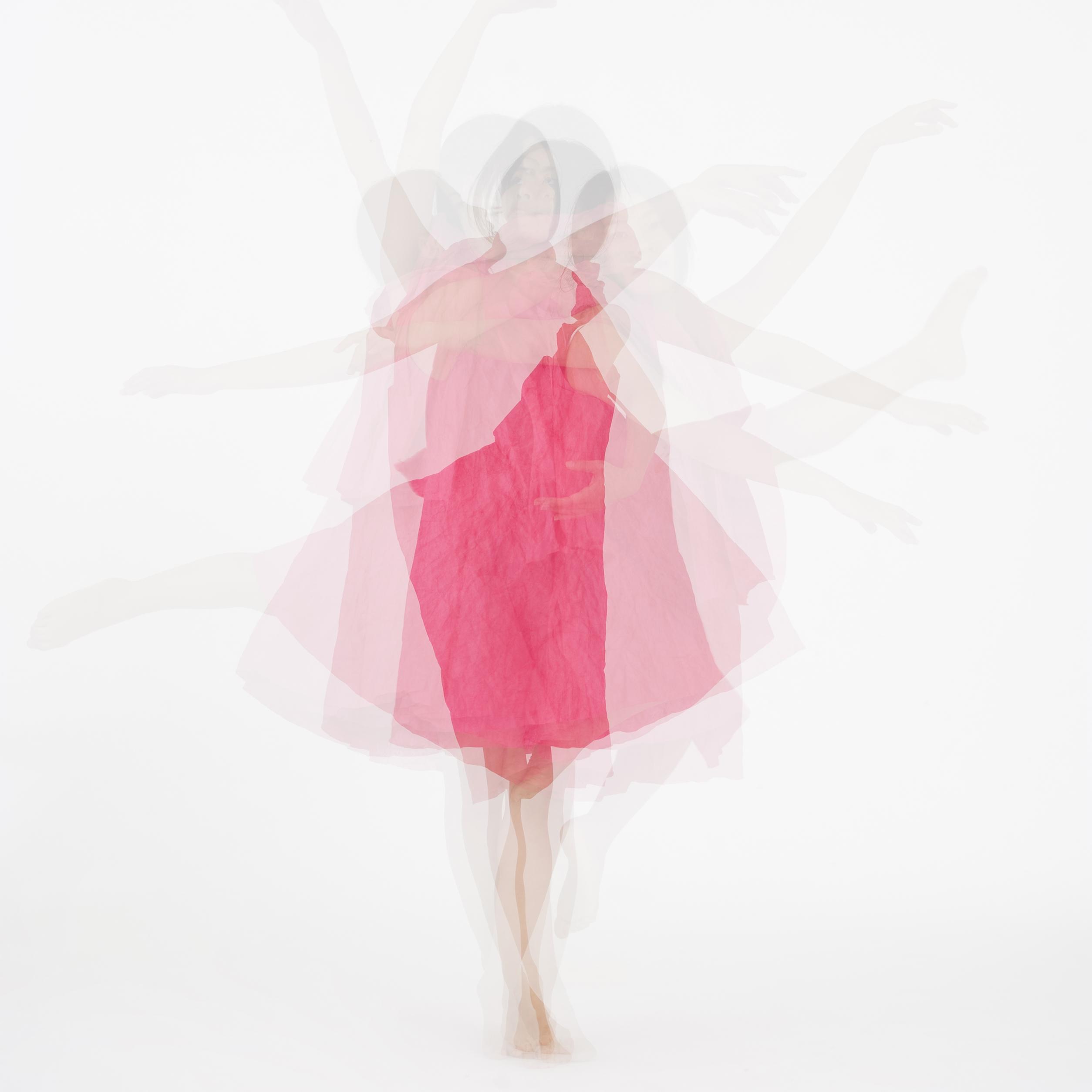紙とダンス