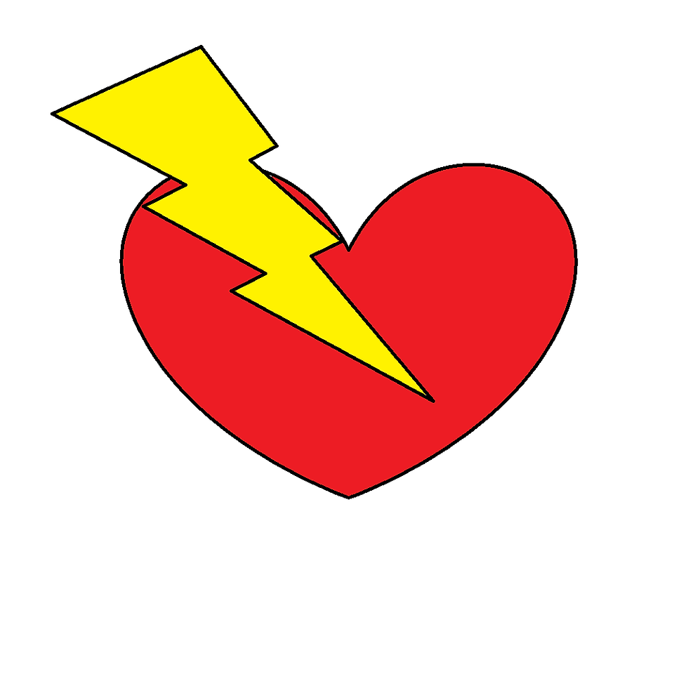 snr logo.png