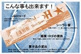 HOSHIカタログ 10
