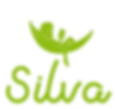 Silva Education Logo Official.png