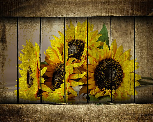 Sunflowers on Wood