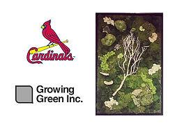 Growing Green Raffle.JPG
