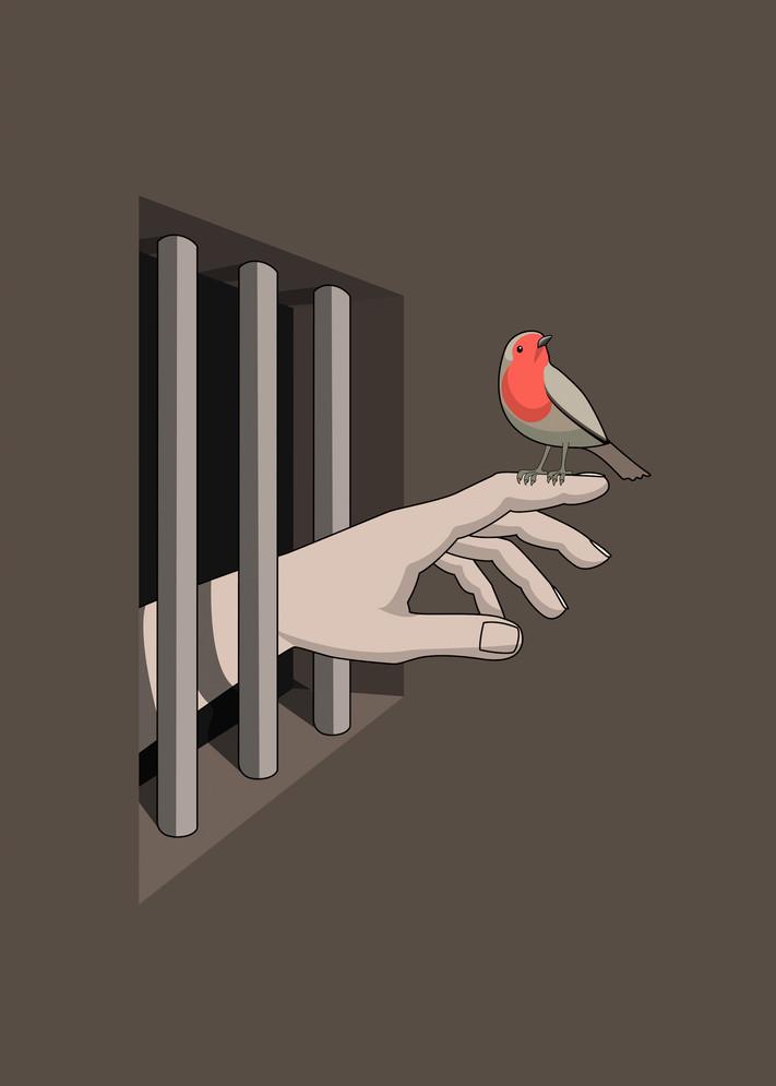 THE PRISONER & THE BIRD