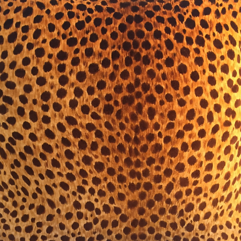 PAIR Leopard Velvet Pillow