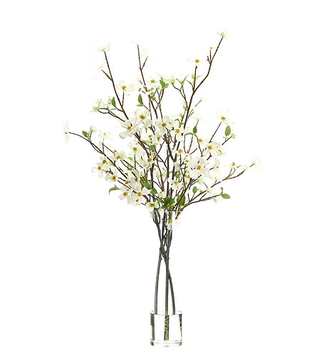 Dogwood Branch in Clear Cylinder