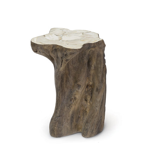Fossilized  Clam Stump Table