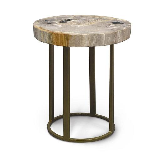Petrified Wood Slice Table With Round Iron Base