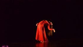 Participante: Desaparecer en tres actos de Julia Nicolau