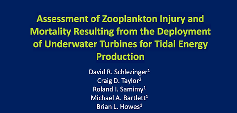 Assessment of Zooplankton Injury and Mortality Resulting from the Deployment of Underwater Turbines for Tidal Energy Production