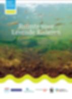 Ruimte voor de levende rivieren WNF.PNG