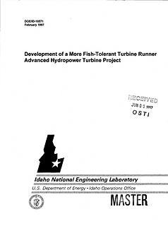 development runner.PNG