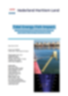 Tidal Energy Fish Impact: Method development to determine the impact of open water tidal energy converters on fish