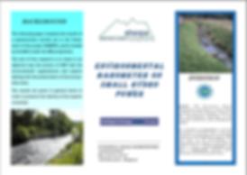 environmental barometer.PNG
