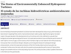 The Status of Environmentally Enhanced Hydropower turbines