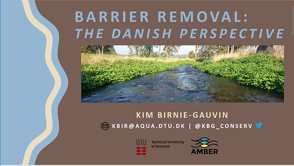 Barriel removal the danish perspective.P