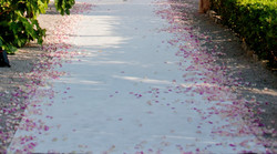 White carpet and rose petals