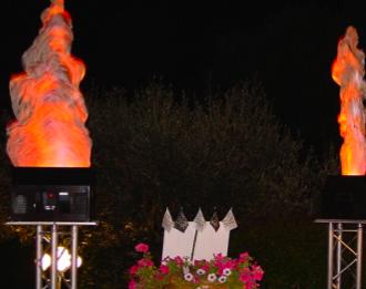 Synthetique Flame Decoration