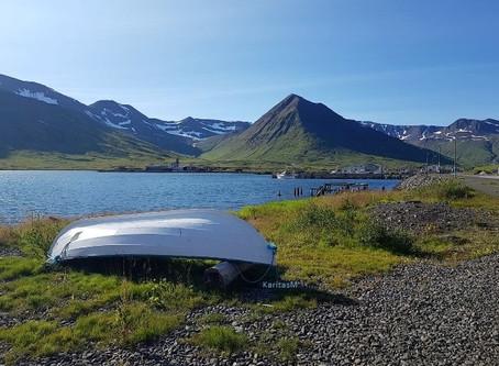 Amazing Iceland - 2020/3!
