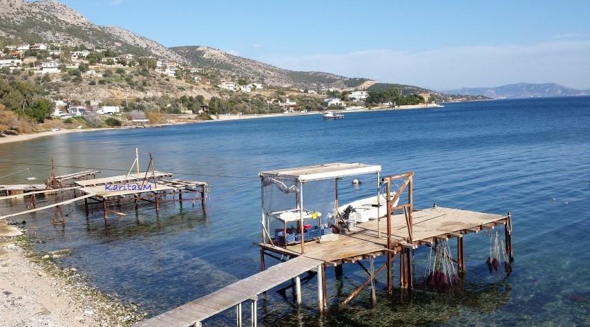Shellfish farming harbor