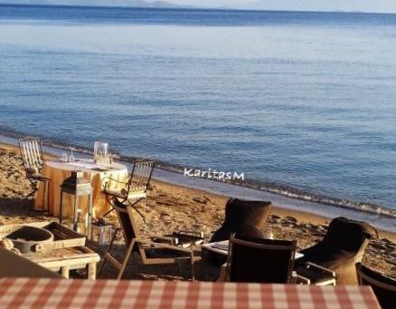 Beachside Hideaway for Foodies!